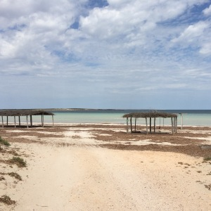 Eucla, Streaky bay and Coffin Bay 042